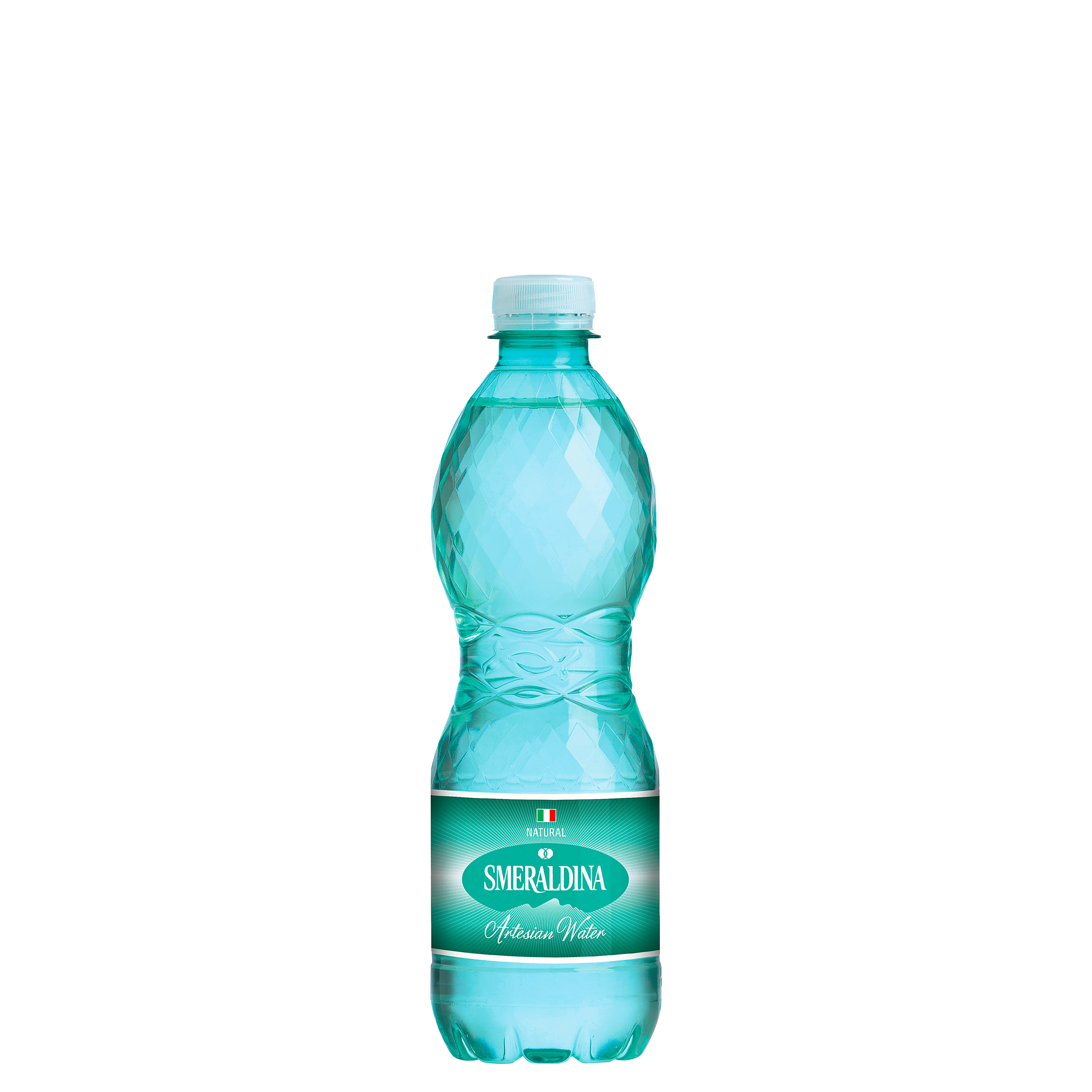 Pet 500 ML (16.9 oz)